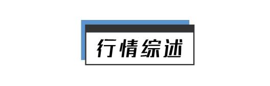 早报 (01.08) | 新增阳性11例!石家庄紧急封城!马斯克登顶世界首富;比特币史上首次突破4万美元