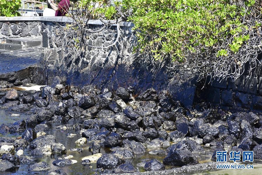毛里求斯搁浅货船漏油事件引发民众抗议