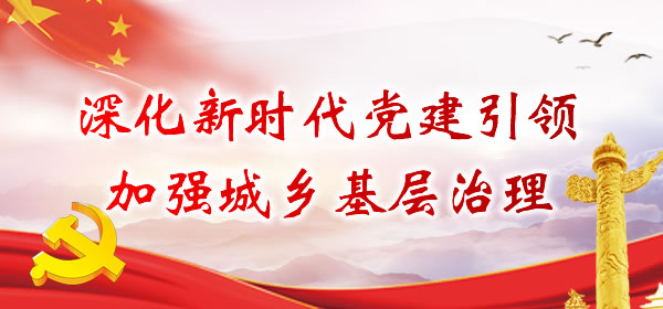 公安县狮子口镇:党员干部下一线,上下一心抗疫情