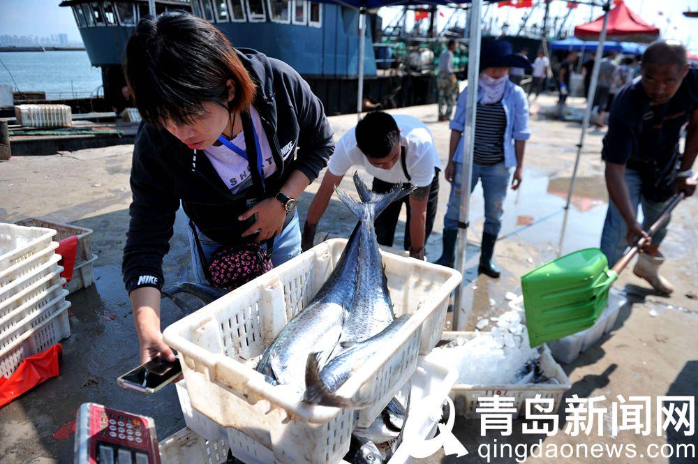 船儿归来鱼虾满仓开海后ope电竞app下载各大码头海货供销两旺