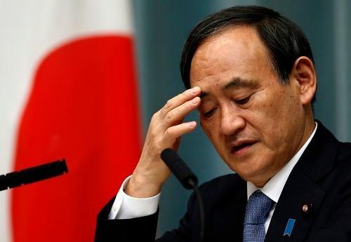 """菅义伟为何尽享""""地利人和""""锁定日本首相位置"""