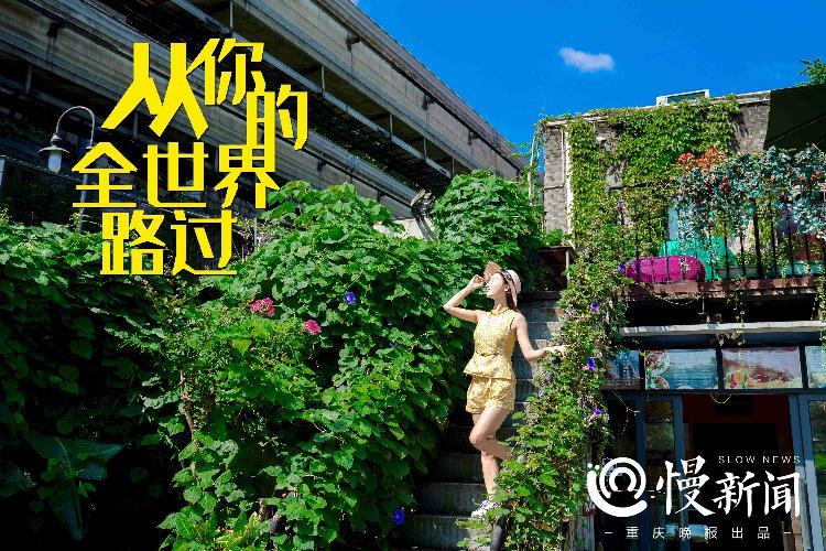 《沉默的真相》《风犬少年的天空》……热门影视都来重庆取景,这些打卡地拍片成本是多少
