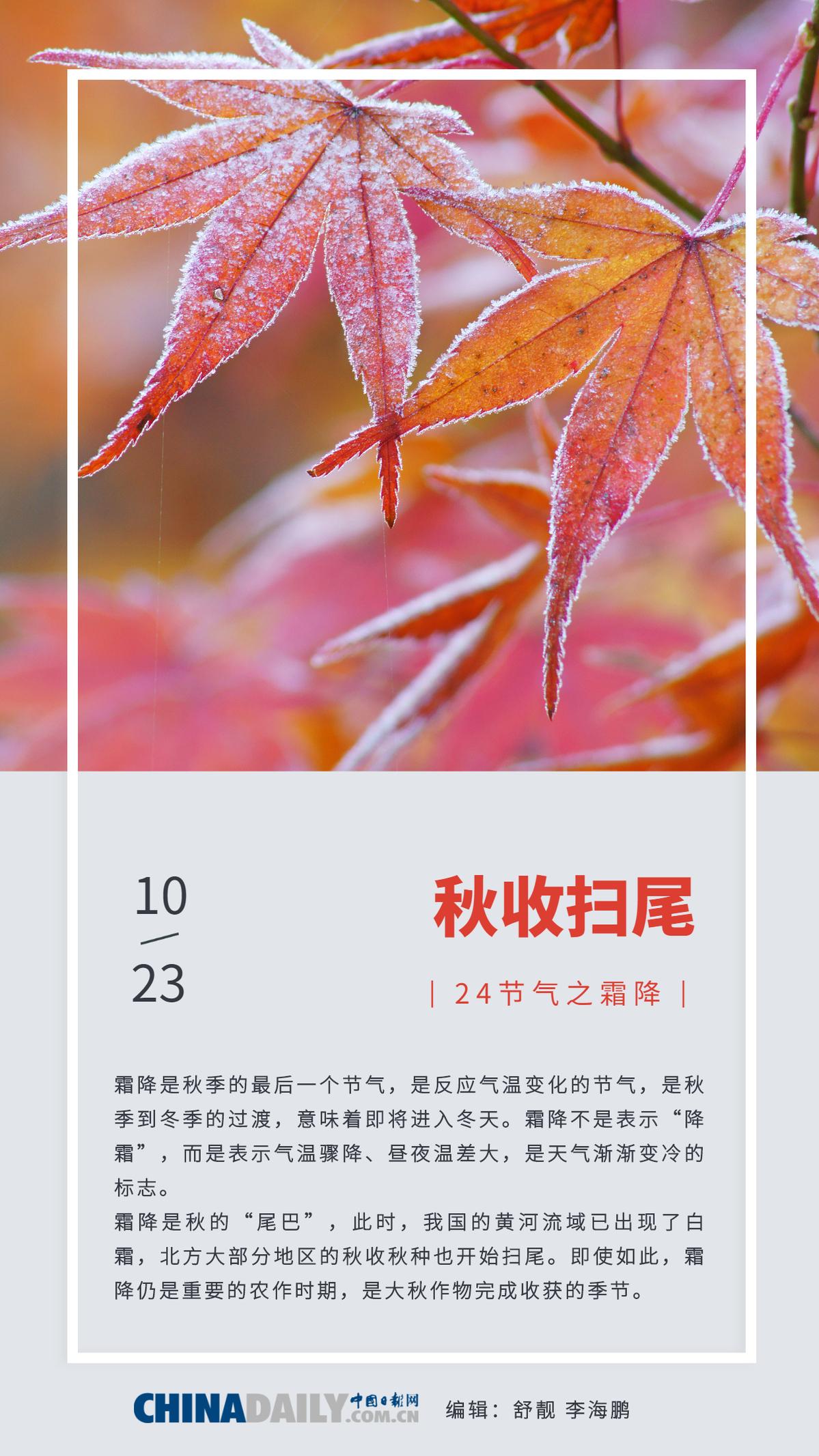 秋季的最后一个节气:霜降