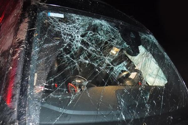 凯文-波特凌晨驾车严重车祸,酒驾、持枪还带毒品