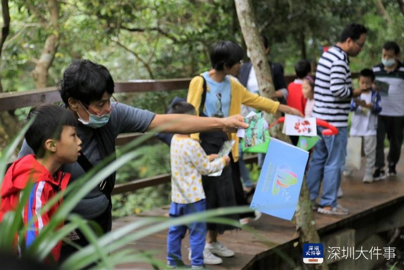 20多个打卡点亲近大自然,深圳盐田举行森林溪流自然嘉年华