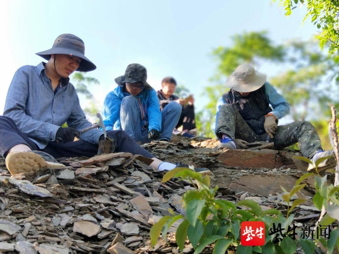 """真和周杰伦有关!南京古生物所专家将5亿年前三叶虫命名为""""范特西虫"""""""