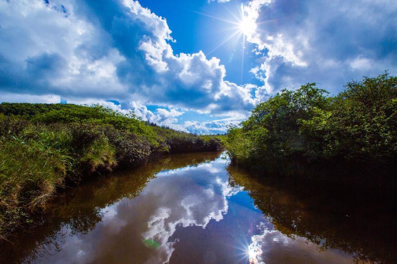 最新丨陕西秦岭林区又新增一处国家湿地公园