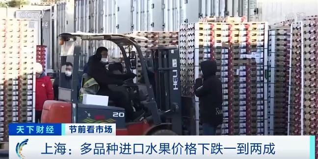 降价的车厘子大量到货!早上8点一个市场就卖完好几集装箱!进口水果纷纷降价了…