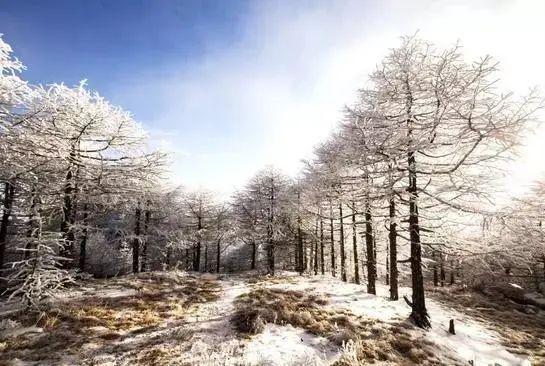 陕西多地气温回升......5A级景区太白山免门票啦