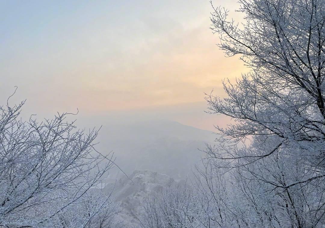 2021年第一场雪 19日凌晨北京地面开始见白 整个城市银装素裹图片