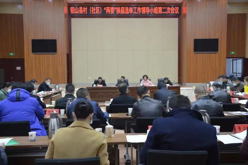 村(社區)黨組織和村(居)民委員會換屆選舉工作,危岩這樣要求