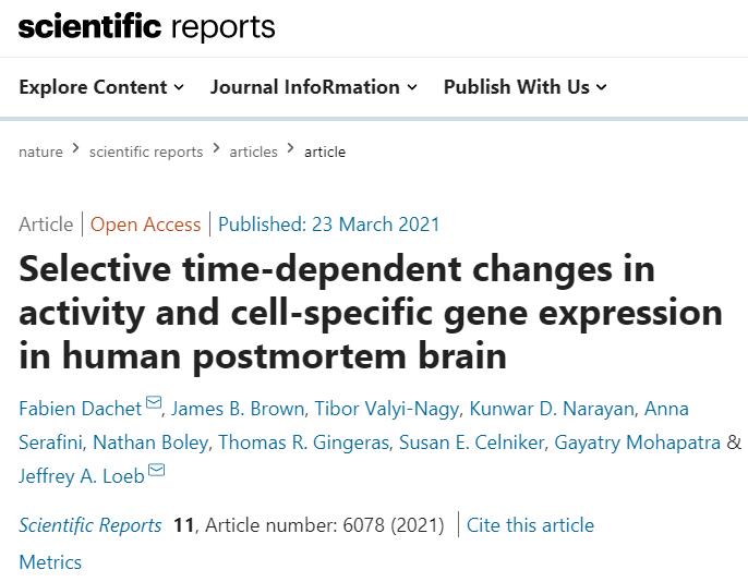 "「Nature子刊」吓人!人脑中竟然存在""僵尸基因"",并且死后才开始活跃"
