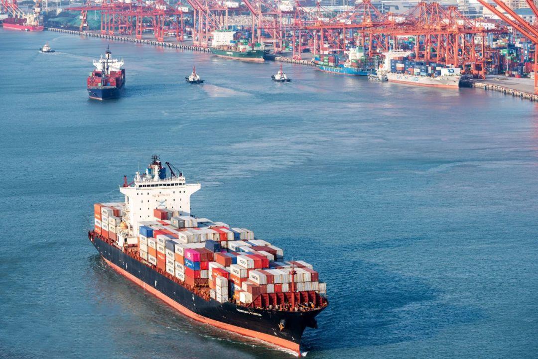 """小数点没打错!航运巨头一季度大赚154亿,28万股东已""""意念涨停"""""""