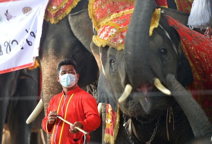泰国考虑为外国游客提供免费机票