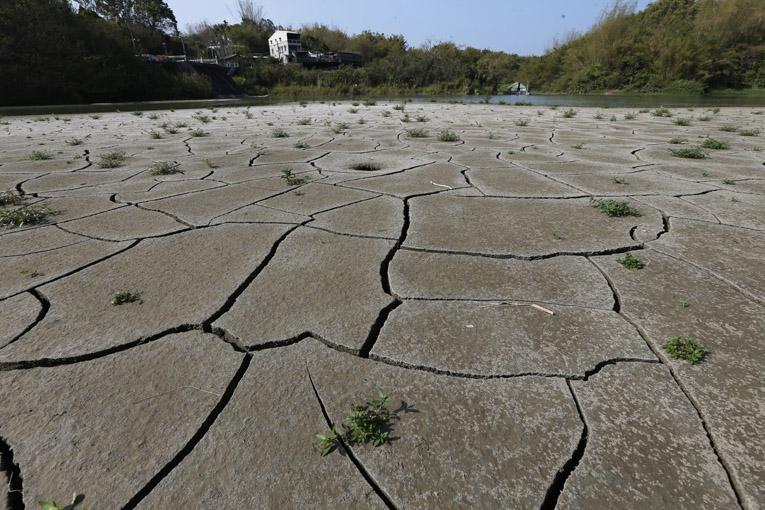 台湾遭遇56年来最大干旱 农业损失已逾5亿新台币