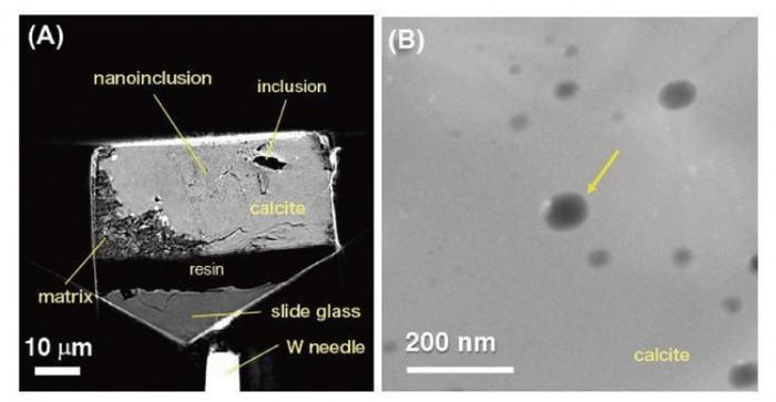 科学家研究发现早期太阳系的陨石内包含水-第1张图片-IT新视野