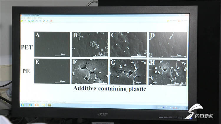 149秒|中科院海洋所发现能有效降解塑料垃圾的海洋微生物菌群