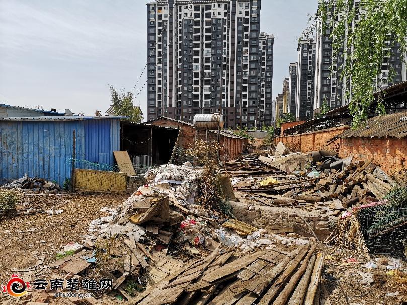 楚雄市:养殖场被取缔 居民生活环境得到改善