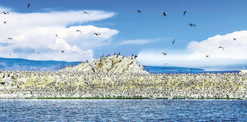 青海加快打造国际生态旅游目的地