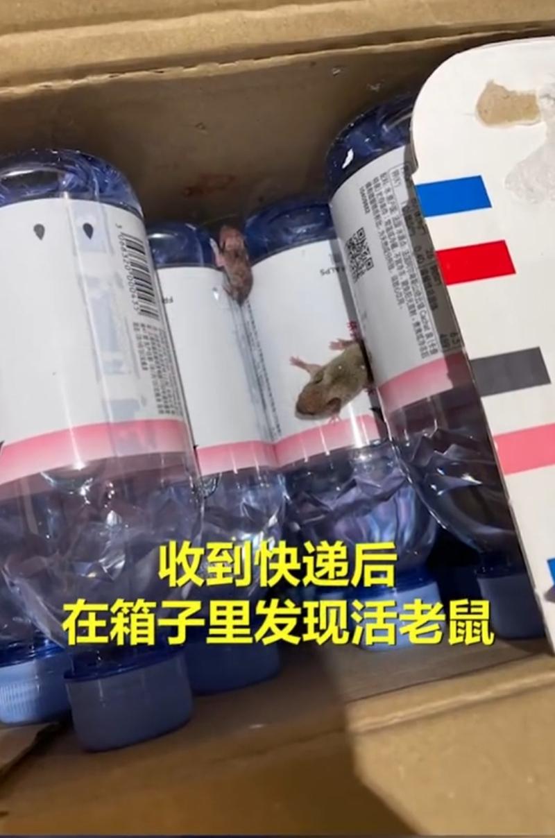 矿泉水快递现活老鼠!天猫超市致歉称将排查原因,已下架产品