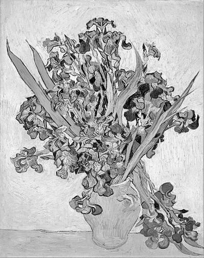 芳香植物与嗅觉诗学
