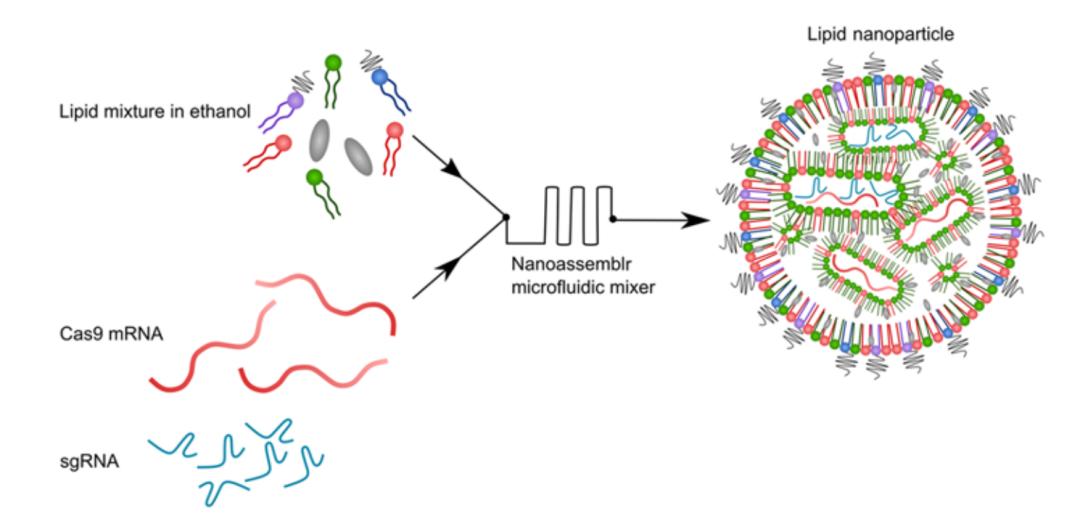 世界首例!基因编辑在活体动物上成功治疗癌症,且永久有效