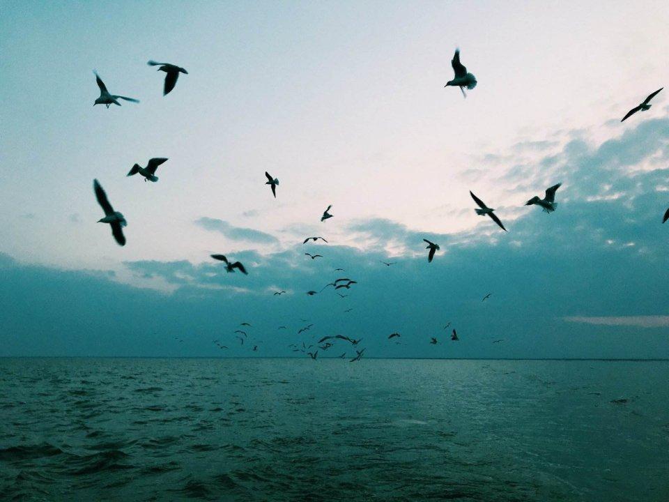 """美丽的""""塞外西湖""""不为人知的神奇故事传说,你知道吗?"""