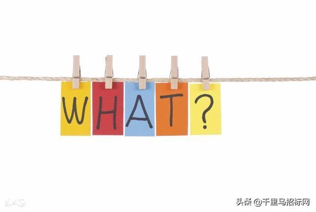 投標人對招標結果提出異議,投訴書的內容包括什么?