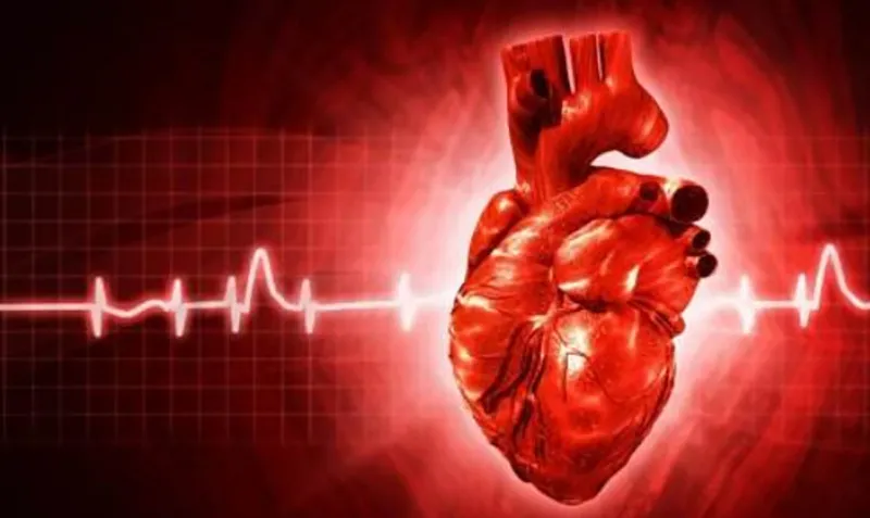 """房颤让卒中风险高5倍!该如何抚慰""""忐忑""""的心?"""