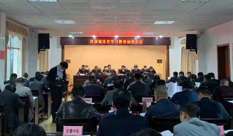 """打造村民""""向往的生活""""阳新县浮屠镇将党史学习教育落到实处"""