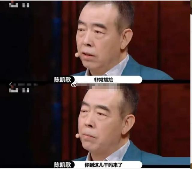 《演员请就位2》:陈凯歌犀利点评流量演技,陈飞宇躺着也中枪