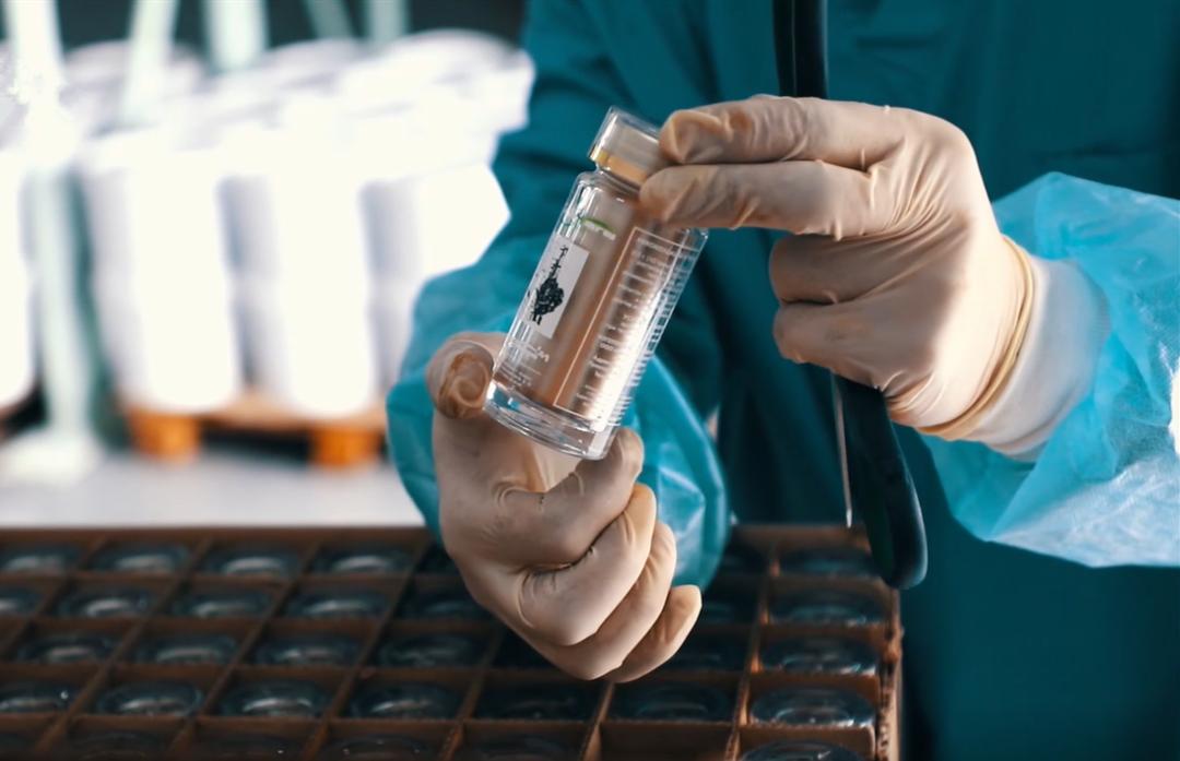 """六大标准严选原料,西伯利亚白桦茸引领""""精致健康""""消费时代"""