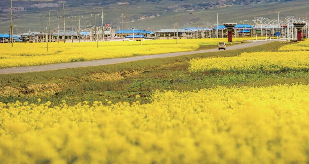 """日喀则的边境小城,颜值超高!不出国就能感受到""""异域风情"""""""