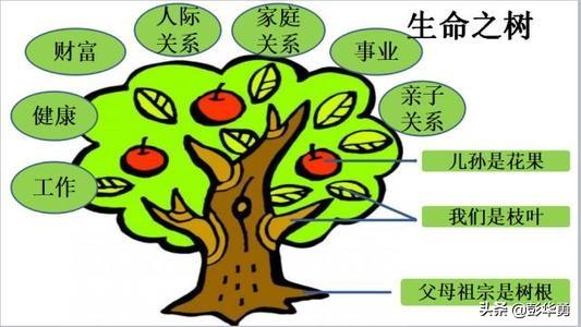 彭華勇:教育的根是什么?