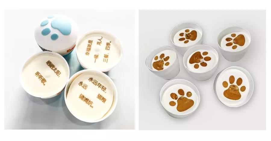 食品打印设备|为冰淇淋行业提供在线喷墨打印技术,让创意更简单