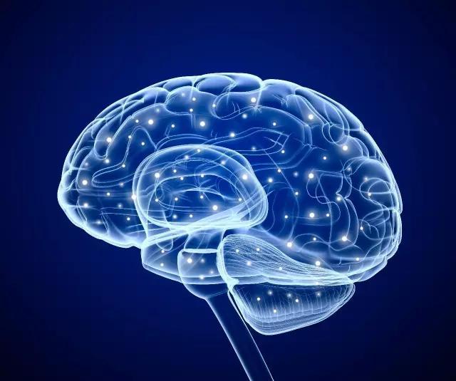 引领右脑教你提高记忆力的11个技巧
