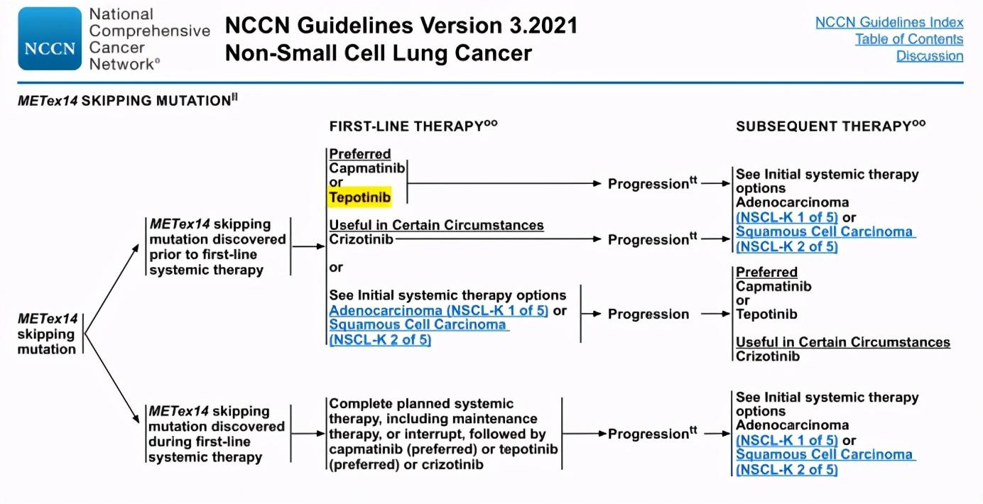 2021年NSCLC指南已更新三版 更新要点一文get