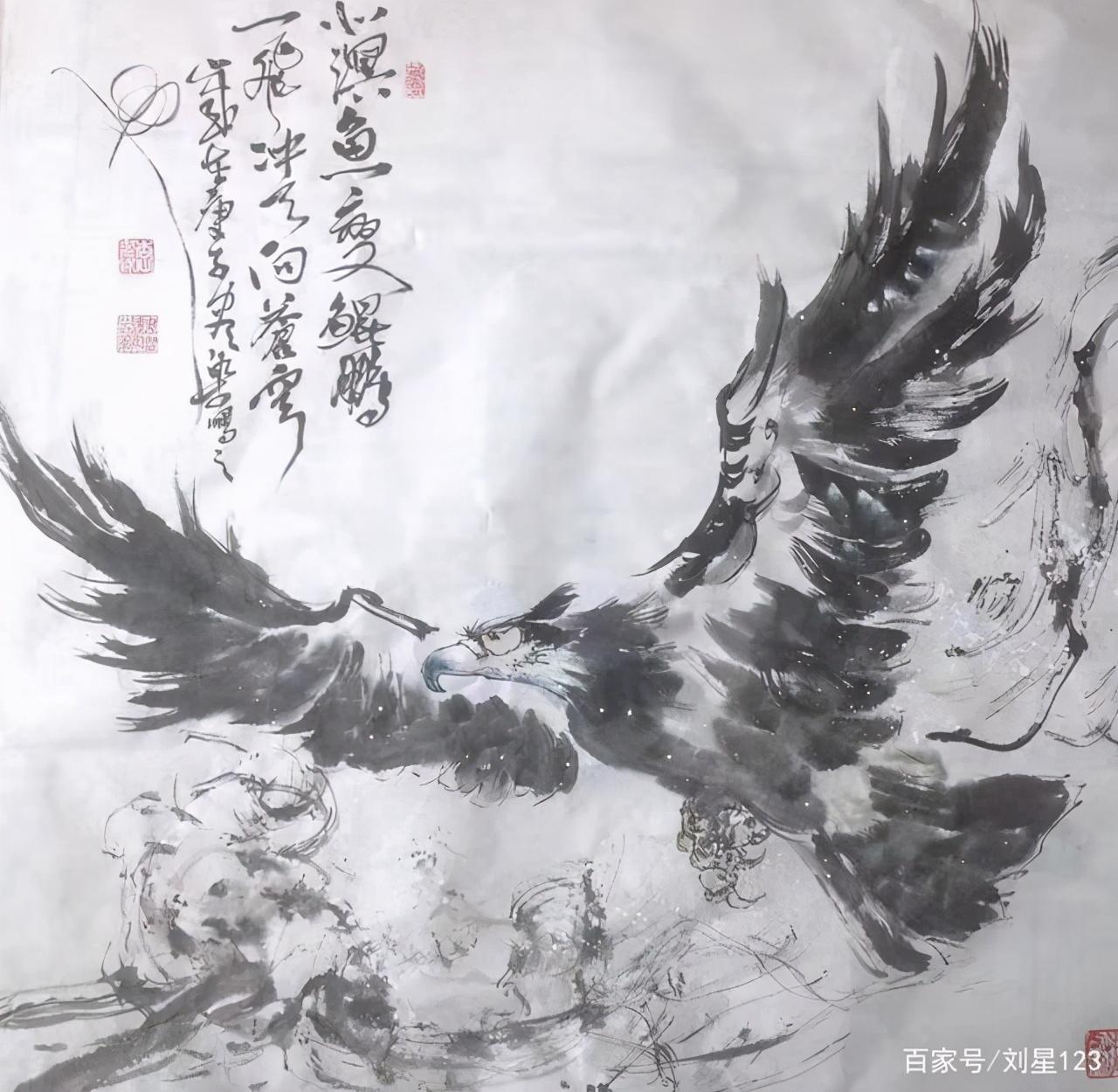 观尽染之鹰……