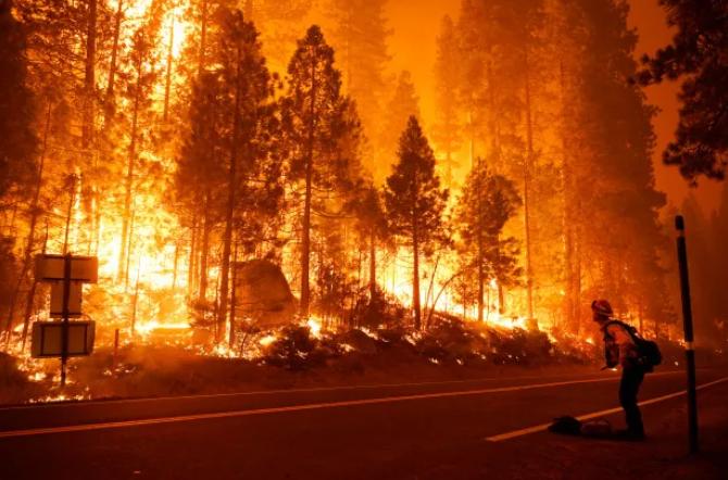美国遭遇毁灭性山火季!大火致使这些产品紧缺,销量暴涨