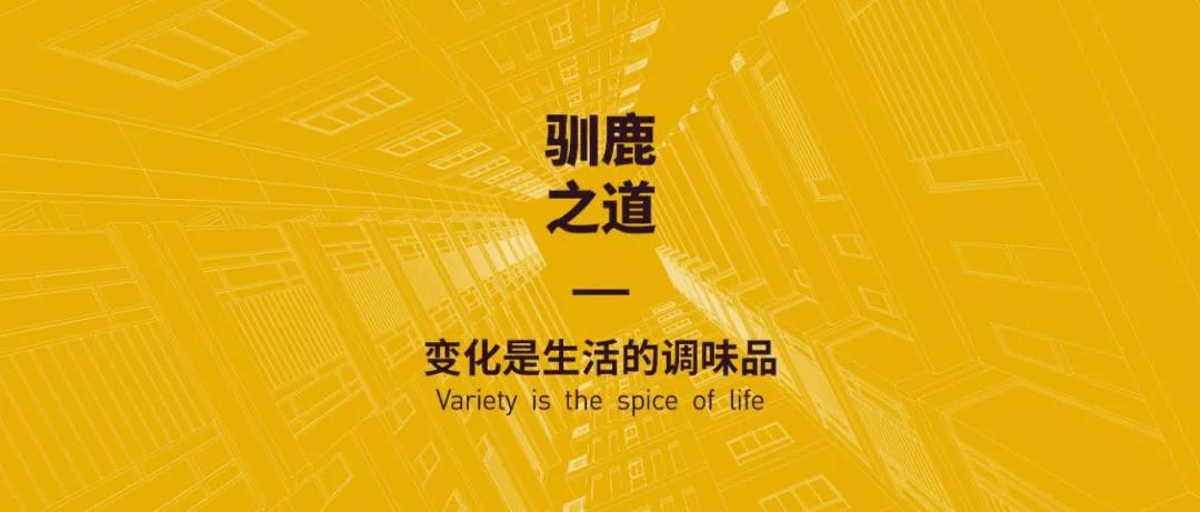 """行云跨境周讯:拼多多联合湖南卫视推出""""11.11超拼夜"""""""