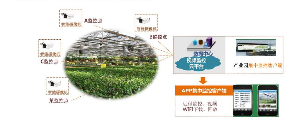 智能温室破解现代农业难题,大棚系统全面提供解决方案