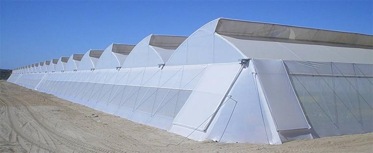 沿海地区抗台风温室大棚如何设计?抗台风连栋温室大棚建造事项