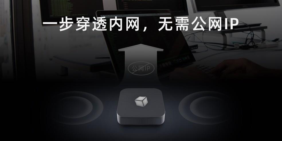 内网IP秒变公网IP,3步实现内网服务远程连接