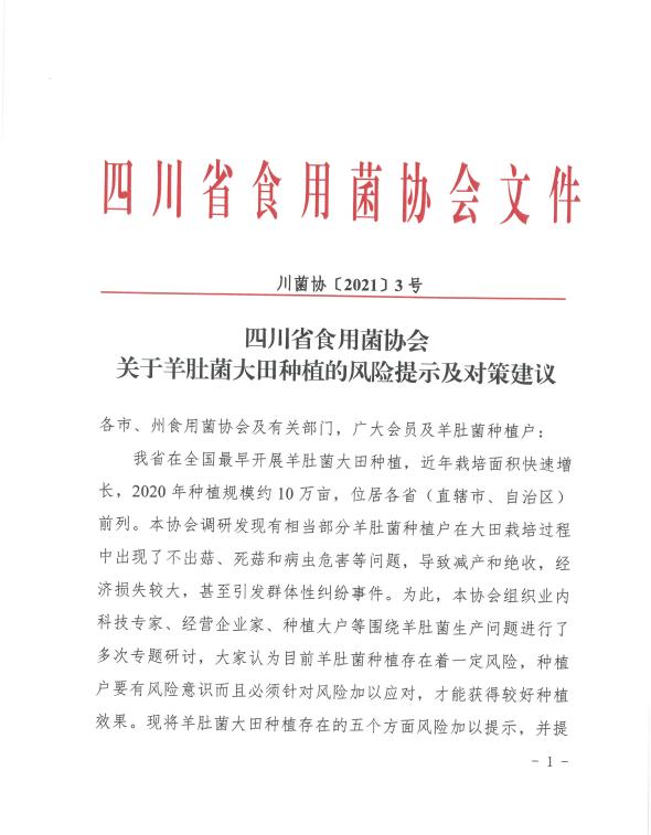 四川省食用菌协会关于羊肚菌大田种植的风险提示及对策建议