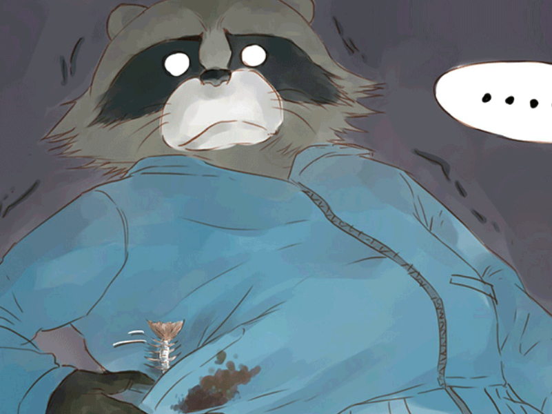 三部很治愈的国漫,一只善良的浣熊,暖心又温馨的故事