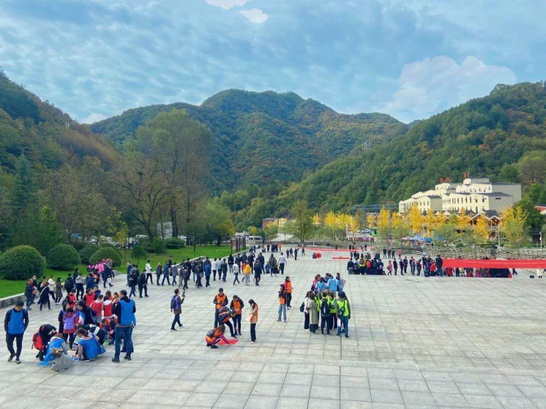 """喜讯!牛背梁国家森林公园荣获""""全国青年文明号"""""""