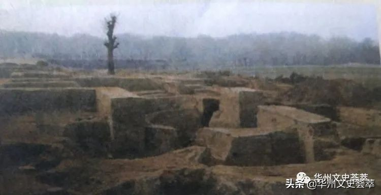 华县村民回忆当年发掘元君庙一泉护村遗址