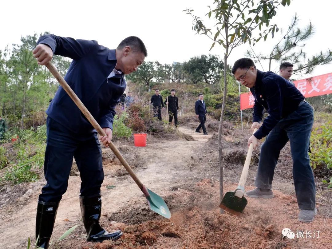 龙岩市、长汀县领导参加义务植树活动