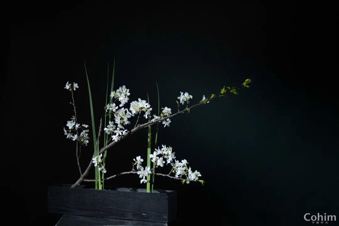 父亲节都送了什么礼物?听说爸爸们都喜欢草月流的竹子装置艺术
