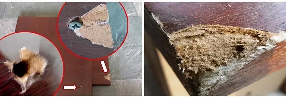 """告别劣质刨花板,无漆实木镀膜板为""""好板材""""代言"""